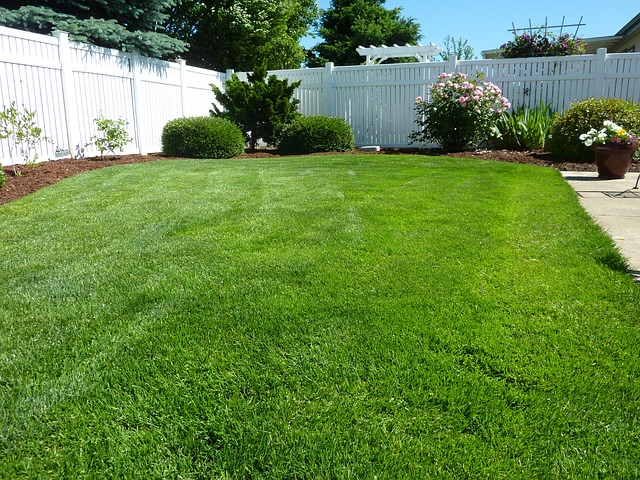 lawn-renovations-in-revere-ma